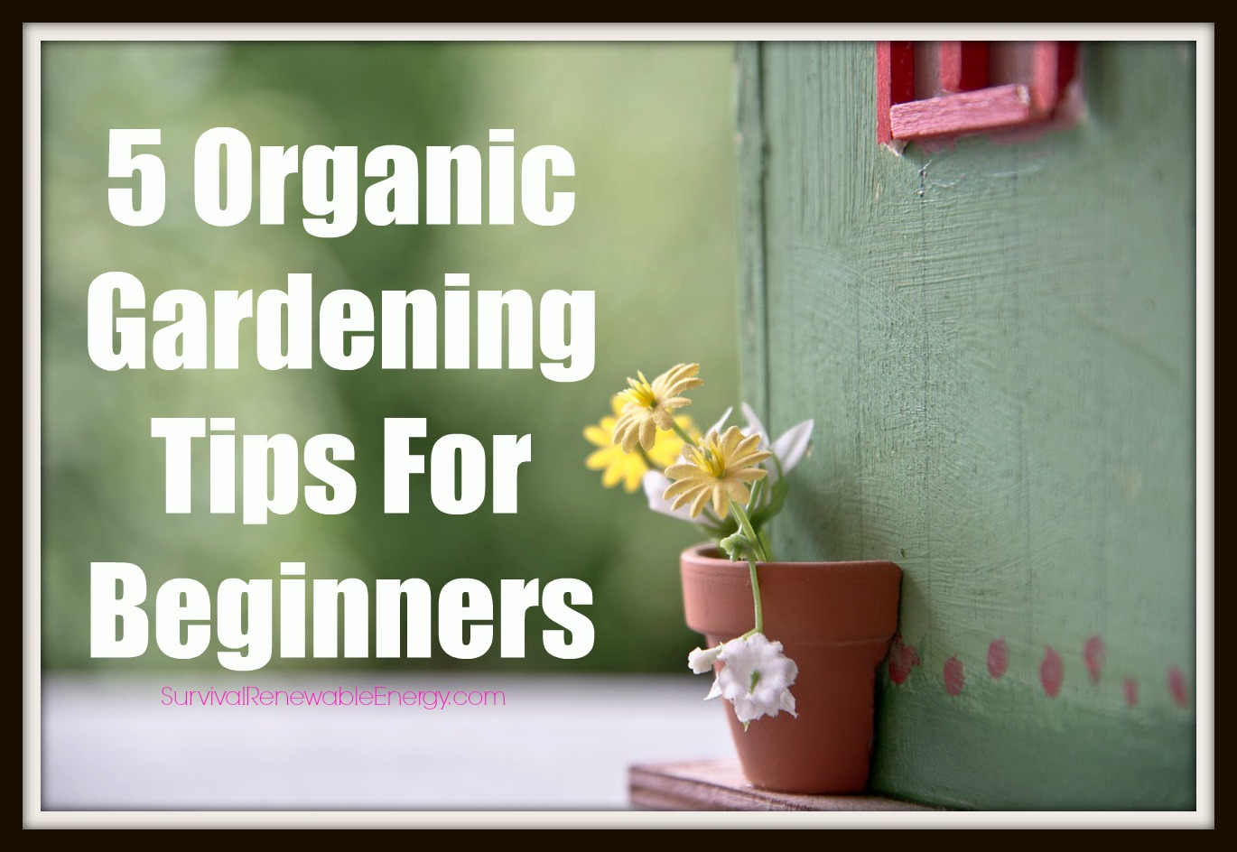 5 organic gardening tips for beginners for Gardening tips